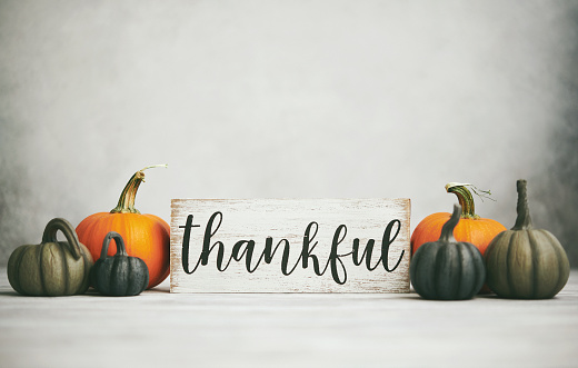 Thanksgiving Fall Background with Assortment of Pumpkins and Thankful Sign