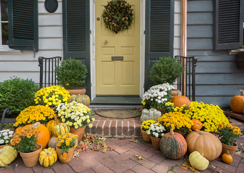 Thanksgiving / Fall Front Door Decoration