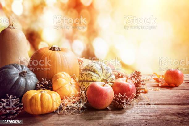 Thanksgiving fall or autumn greeting background with pumpkin picture id1037609284?b=1&k=6&m=1037609284&s=612x612&h=bei xwesb8avvhjgxvpc0caxjvhzwqouwcinvqk9rxy=