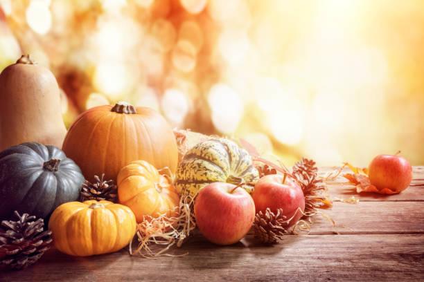 dziękczynienie, jesień lub jesień powitanie tło z dyni - zbierać plony zdjęcia i obrazy z banku zdjęć