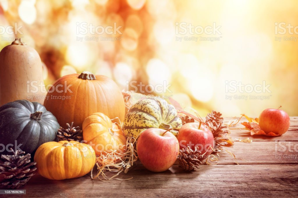 Thanksgiving, fall or autumn greeting background with pumpkin stock photo