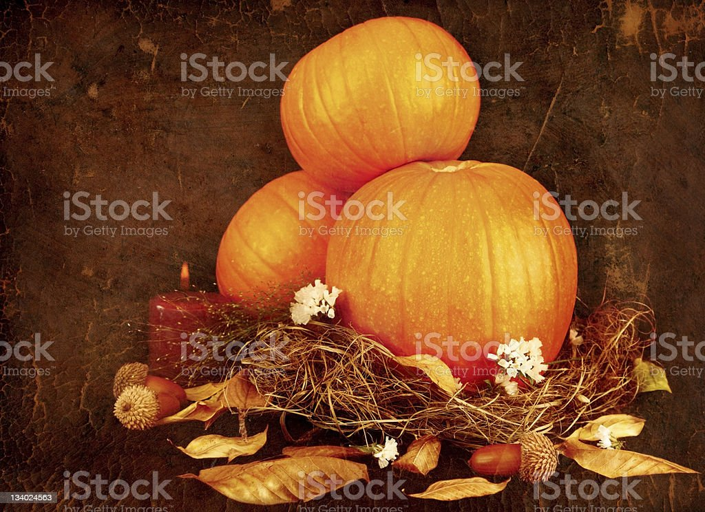 Thanksgiving holiday greeting card royalty-free stock photo