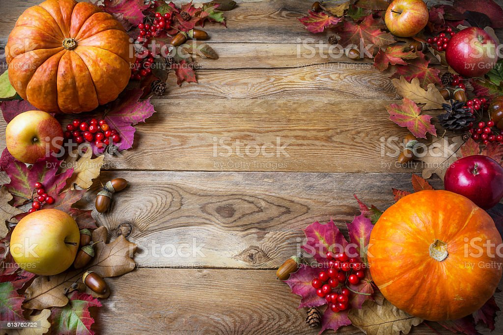 Thanksgiving or fall concept with pumpkins and apples, copy spac stock photo