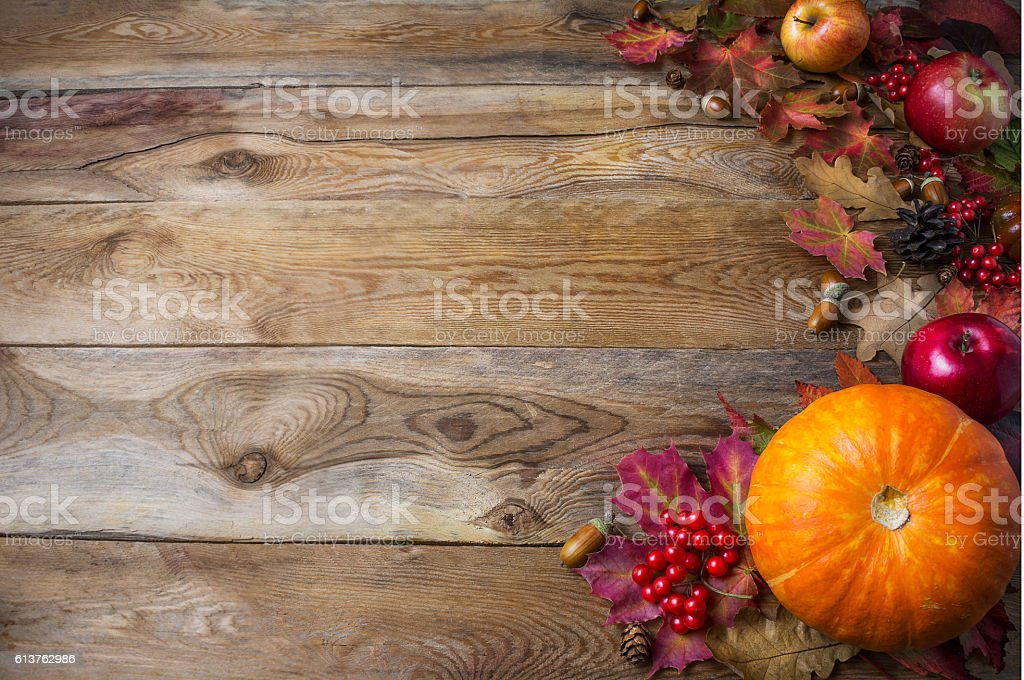 Thanksgiving  or fall greeting background with pumpkins and fall stock photo