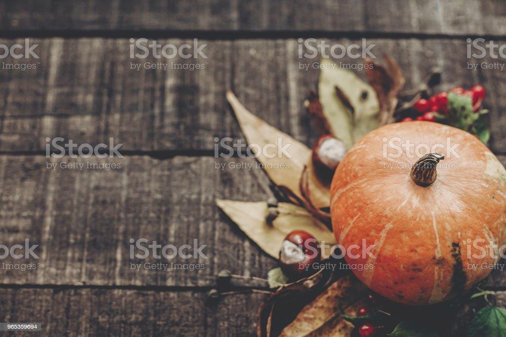 感恩節或萬聖節概念賀卡。美麗的南瓜與樹葉和漿果在質樸的木質背景, 頂部的看法。文本的空間。溫馨的秋日心情。秋季假期 - 免版稅傳統圖庫照片