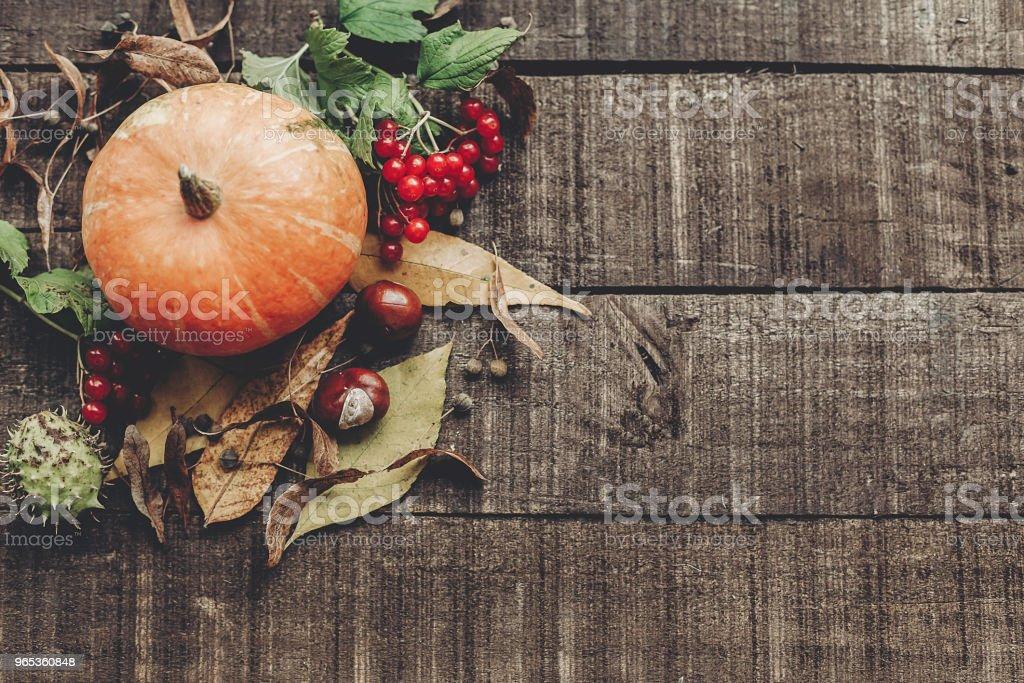 action de grâces ou halloween concept lay plat carte de souhaits. belle citrouille avec feuilles et baies sur fond en bois rustique, vue de dessus. espace pour le texte. chaleureuse ambiance automne. vacances d'automne - Photo de Aliment libre de droits
