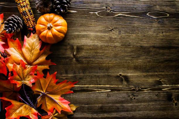Thanksgiving Pumpkin Background Autumn, Thanksgiving, Backgrounds. fall background stock pictures, royalty-free photos & images