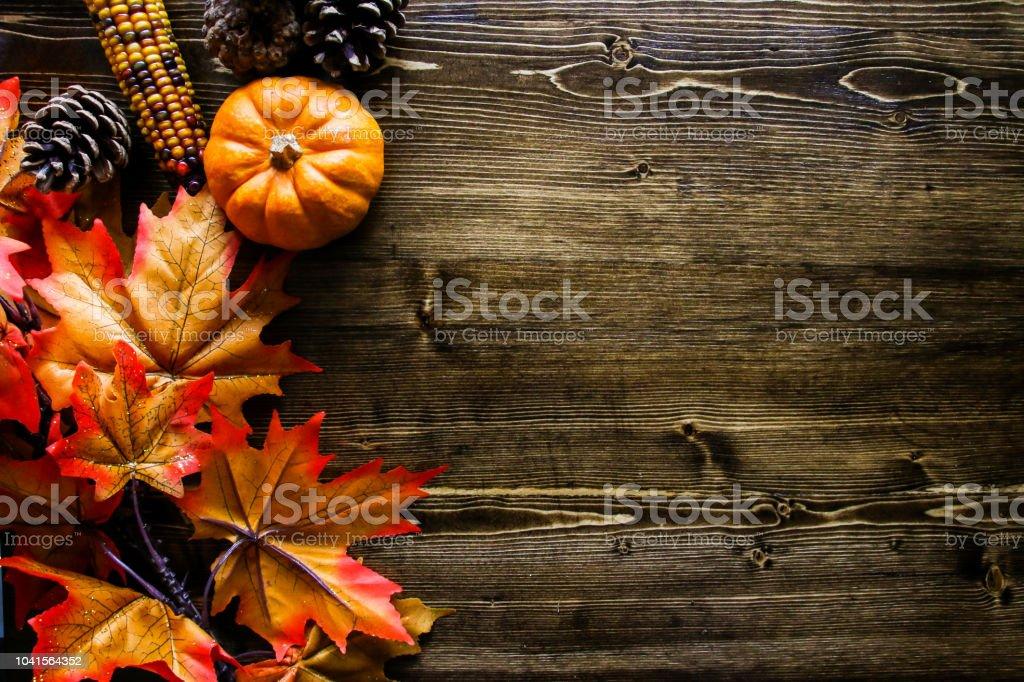 Thanksgiving Pumpkin Background stock photo