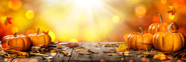 Thanksgiving Pumpkins And Leaves On Rustic Wooden Table With Sunlight And Bokeh Mini Thanksgiving Pumpkins And Leaves On Rustic Wooden Table With Sunlight And Bokeh On Orange Background - Thanksgiving / Harvest Concept fall background stock pictures, royalty-free photos & images