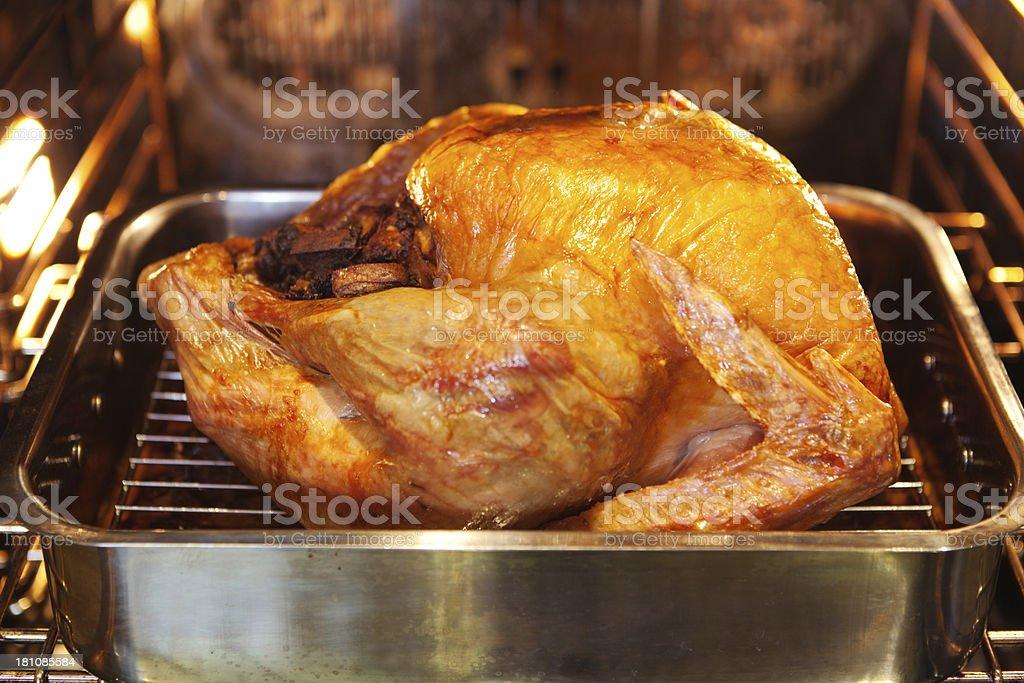 Dia de Ação de Graças da torrefação de peru assado no forno - foto de acervo
