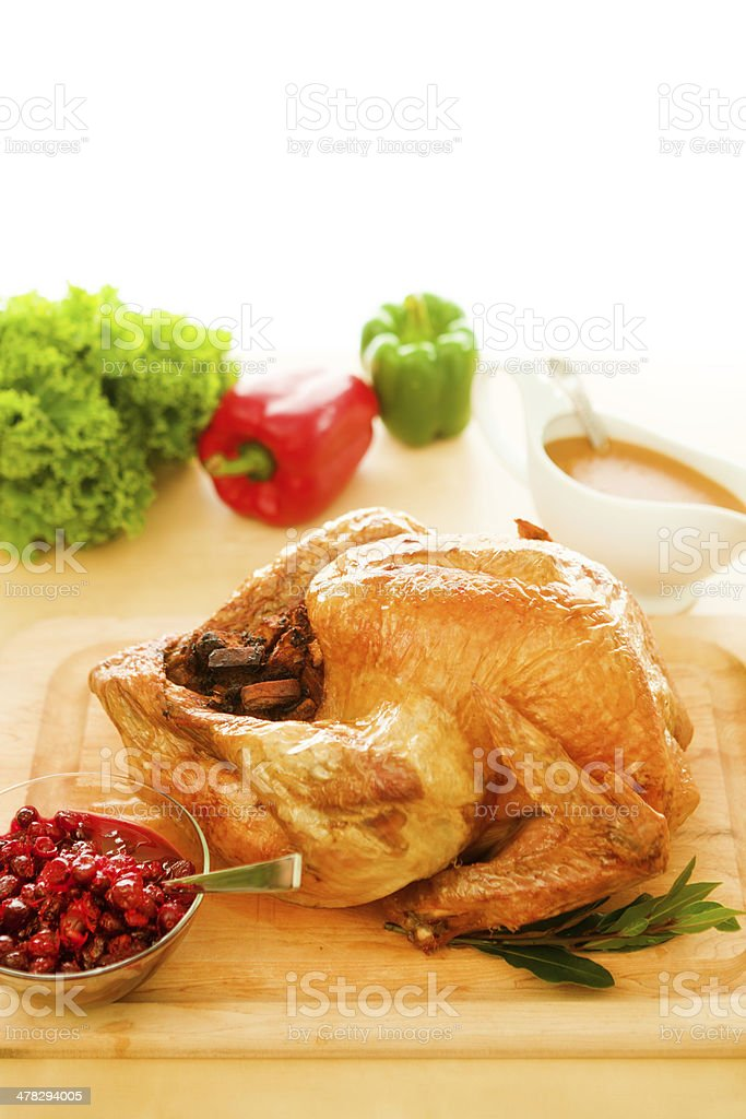 Thanksgiving Roasted Turkey with Gravy and Cranberries Side View Horizontal royalty-free stock photo