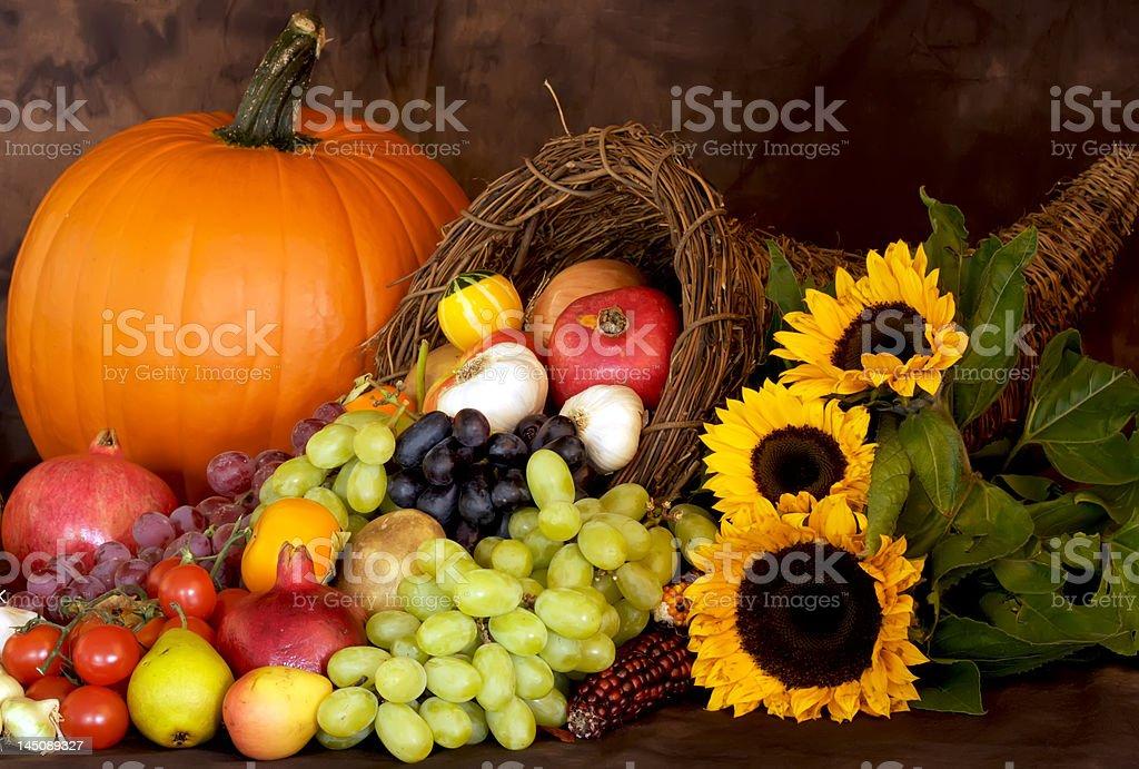 Thanksgiving Season stock photo