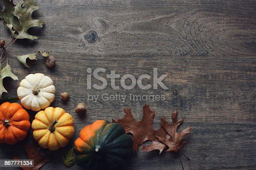 istock Thanksgiving season still life with colorful small pumpkins, acorn squash and fall leaves over rustic wood background. 867771334