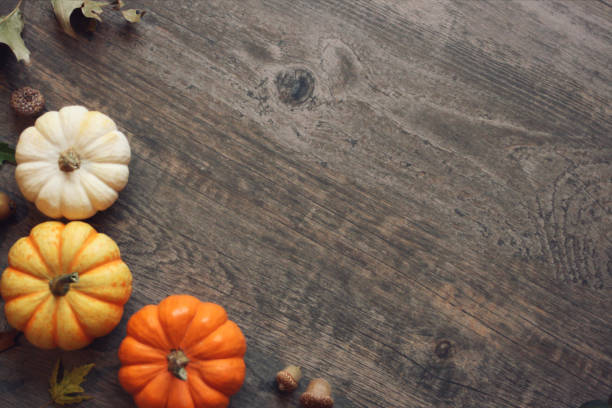 Best Thanksgiving Background Stock Photos Pictures