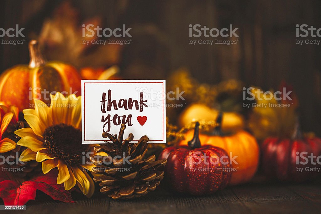 Thanksgiving still life background with pumpkins, acorns and message - Photo