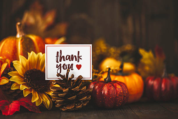 Thanksgiving still life background with pumpkins, acorns and message Thanksgiving still life background with pumpkins, acorns and message maple leaf photos stock pictures, royalty-free photos & images