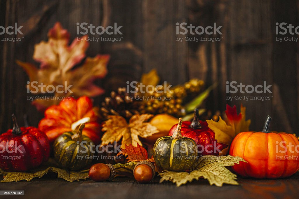 Thanksgiving still life background with pumpkins and acorns stock photo