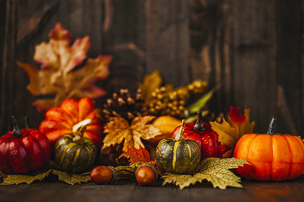 royalty free thanksgiving pictures images and stock photos istock
