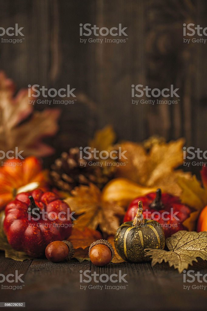Thanksgiving still life background with pumpkins and autumn leaves foto royalty-free