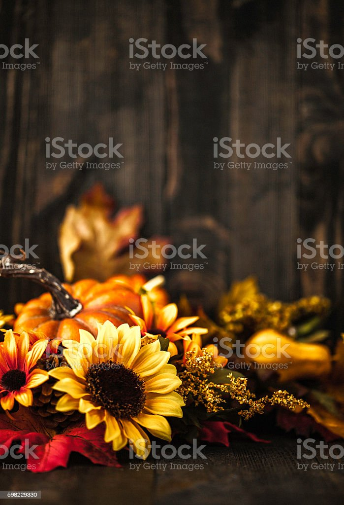 Thanksgiving still life background with pumpkins and sunflowers foto royalty-free