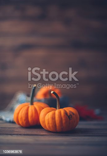 Thanksgiving still life with miniature pumpkins and bowl