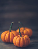 Thanksgiving still life with rustic setting of miniature pumpkins on wood tabletop