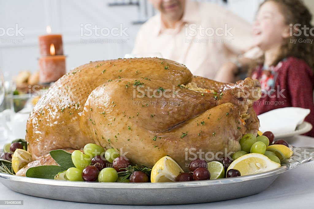 Thanksgiving turkey royalty-free stock photo