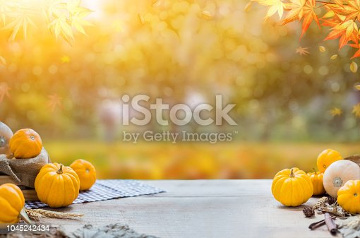 istock Thanksgiving with fruit and vegetable on wood in autumn and Fall harvest cornucopia season 1045242434