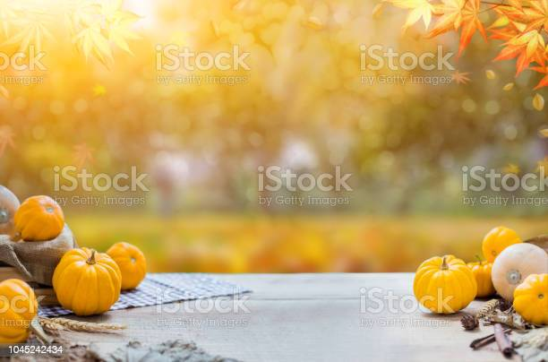 Thanksgiving with fruit and vegetable on wood in autumn and fall picture id1045242434?b=1&k=6&m=1045242434&s=612x612&h=c zhdrwh4vubx1y dwarexsoehehououer2nardogdw=