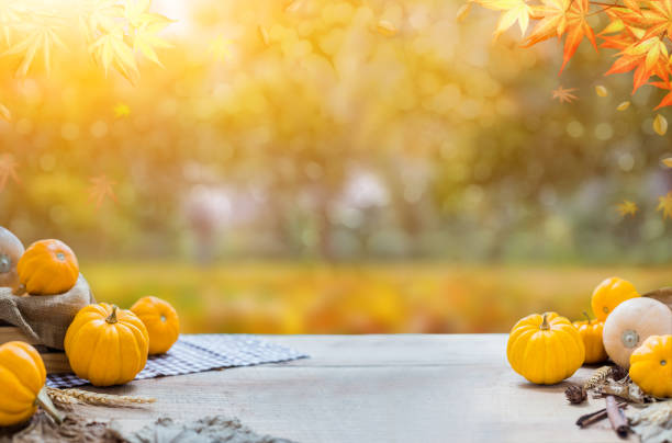 Thanksgiving with fruit and vegetable on wood in autumn and Fall harvest cornucopia season Thanksgiving with fruit and vegetable on wood in autumn and Fall harvest cornucopia season fall background stock pictures, royalty-free photos & images