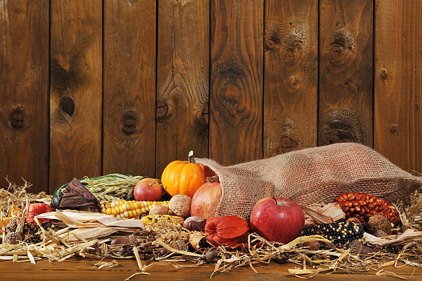 Thanksgiving with jute bag Thanksgiving - different pumpkins, maize-cob, apples and grain in jute bag on straw in front of old weathered wooden board anhydrous stock pictures, royalty-free photos & images