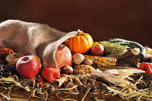 Thanksgiving with jute bag Thanksgiving - different pumpkins, maize-cob, apples and grain in jute bag on straw with copyspace in front of brown background anhydrous stock pictures, royalty-free photos & images