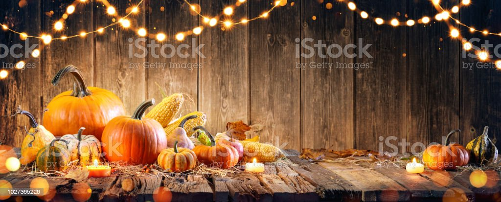 Thanksgiving With Pumpkins And Corncob On Wooden Table stock photo