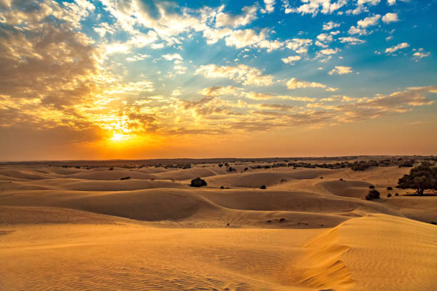 thar desert jaisalmer, rajasthan, india at sunset with moody sky. - desert stock pictures, royalty-free photos & images