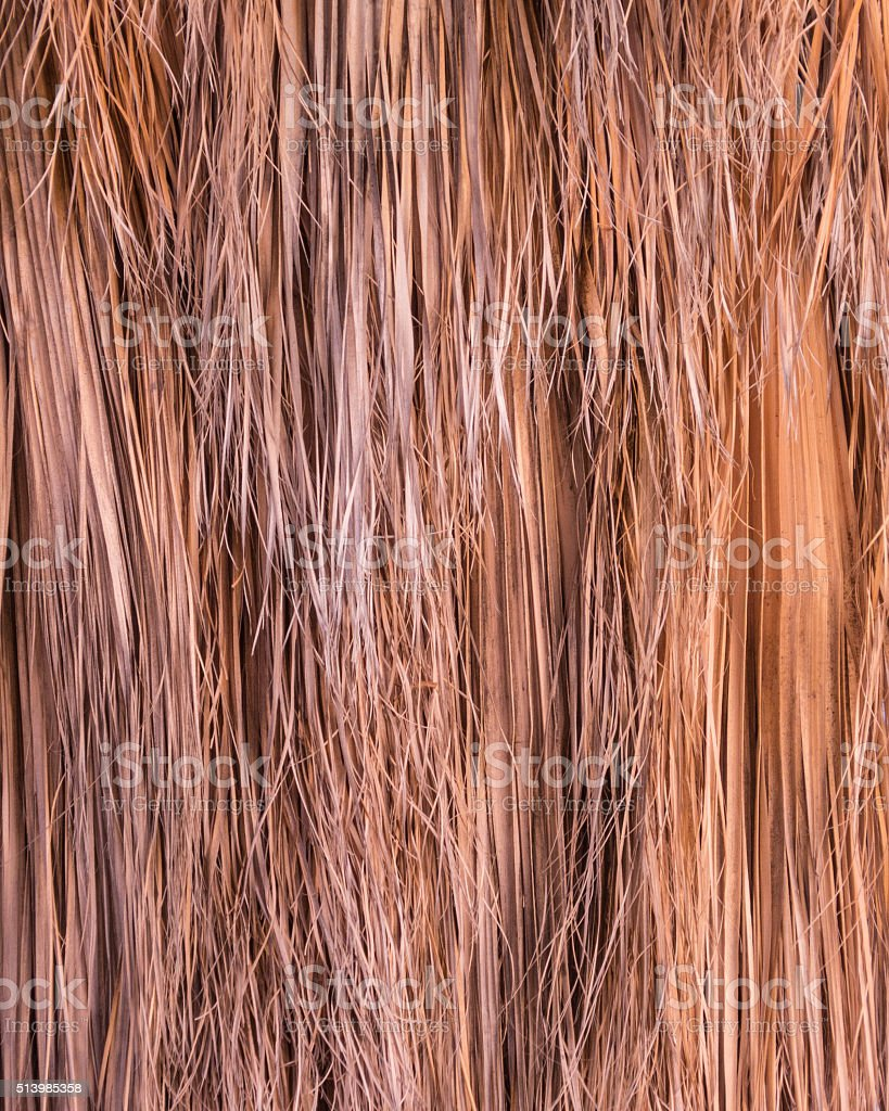 Thatch Background stock photo