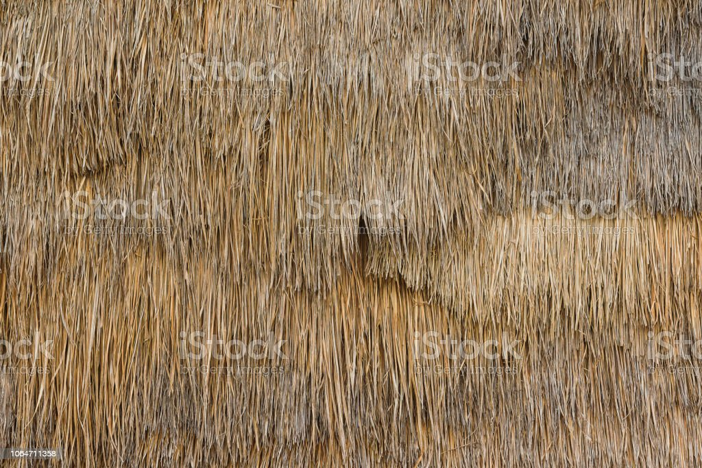 Thatch background texture stock photo