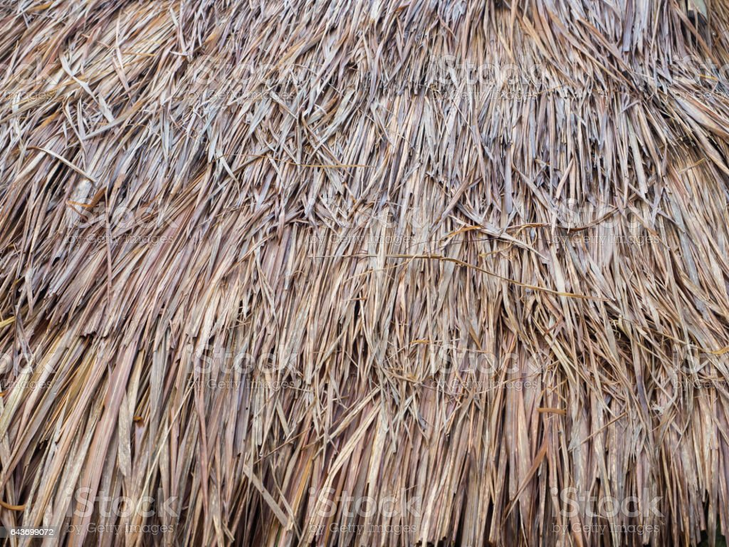 Straw roof material mexican thatch runner roll sc 1 st for Bamboo roofing materials