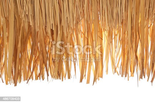 istock Thatch roof 486709403