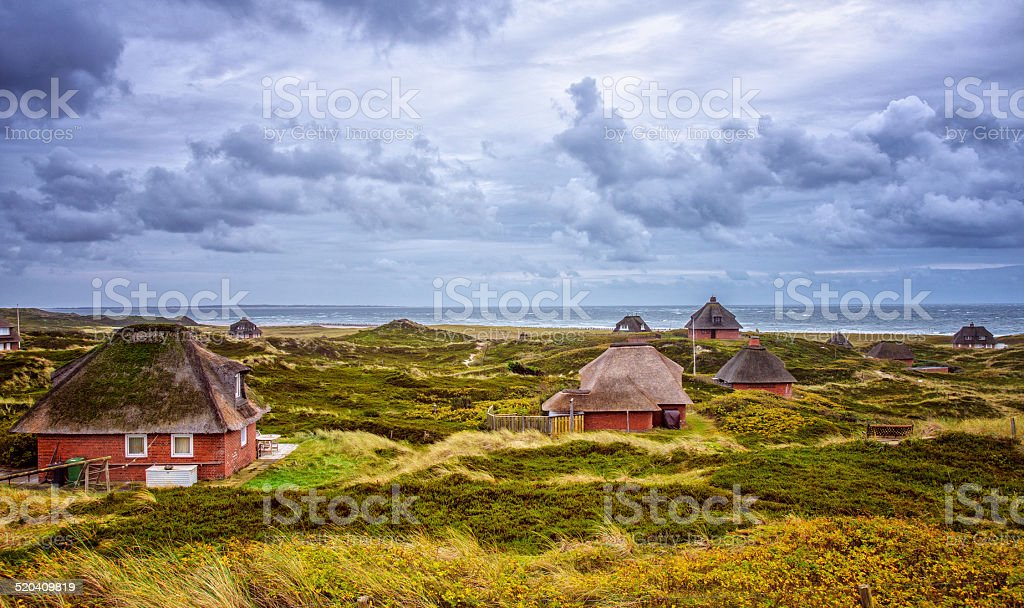 Thatched Houses in the dunes of Hörnum (Sylt) stock photo