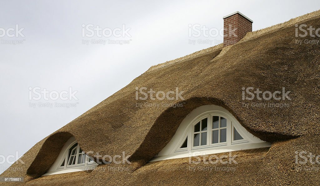 Thatched Roof stock photo