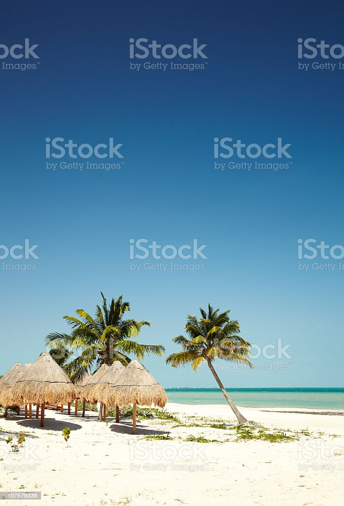 Thatched roof umbrellas on tropical beach stock photo