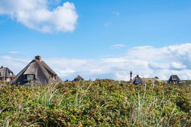 reetgedeckte häuser im strandhafer bedeckt dünen an der küste der insel sylt, deutschland mit rot-weißen leuchtturm am horizont versteckt - sylt urlaub stock-fotos und bilder