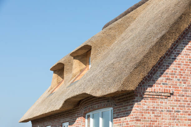 Thatching stock photo