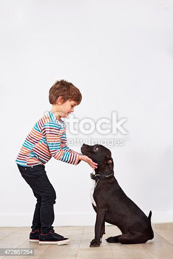 istock That's a good boy... 472857254