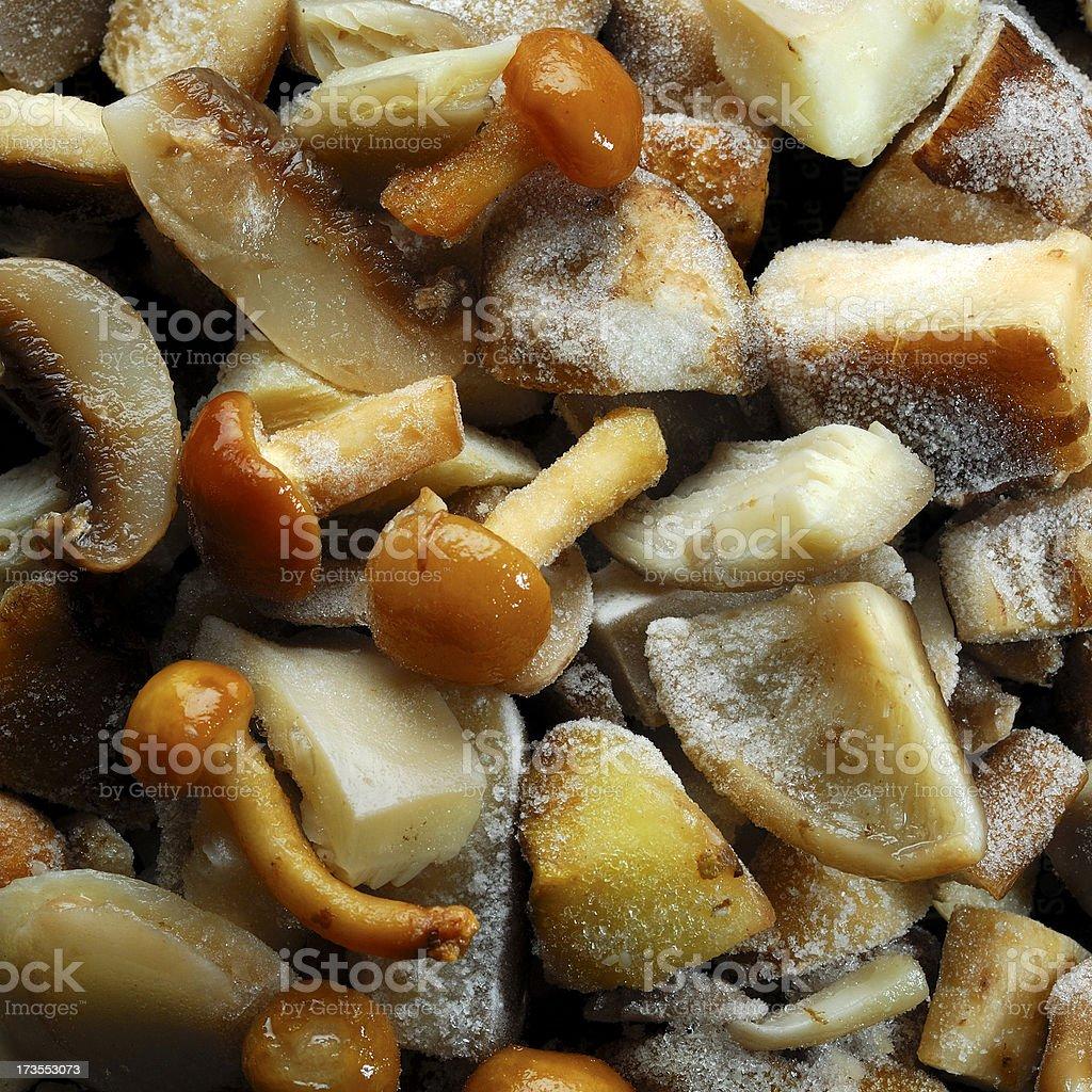 Thawing frozen mushrooms royalty-free stock photo