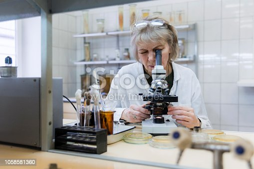 The 50-years-old attractive seriose woman, scientist, working with the microscope and bacterial culture in the college microbiology laboratory. Kaliningrad, Russia.