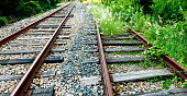 The abandoned rails was overgrown with weeds