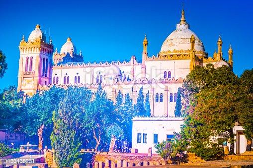 The Acropolium, also known as Saint Louis Cathedral at Byrsa - Carthage, Tunis, Tunisia