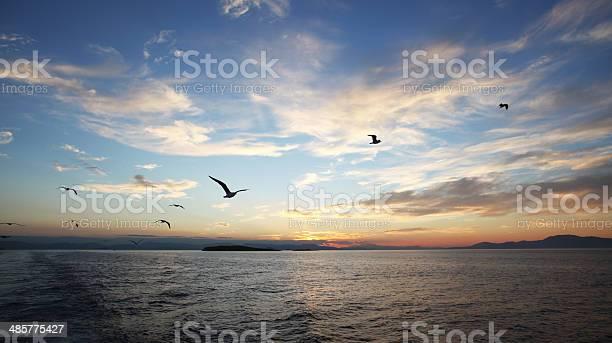 The aegean sea sunset picture id485775427?b=1&k=6&m=485775427&s=612x612&h=q8qyywwrcdjrdij18ukgqh2hjkcjrm imxintbgyp14=