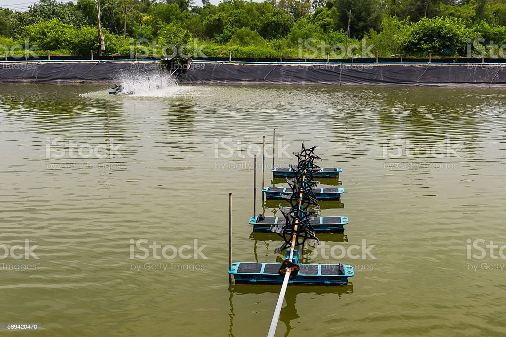 The aeration turbines in the shrimp farm for fresh water stock photo